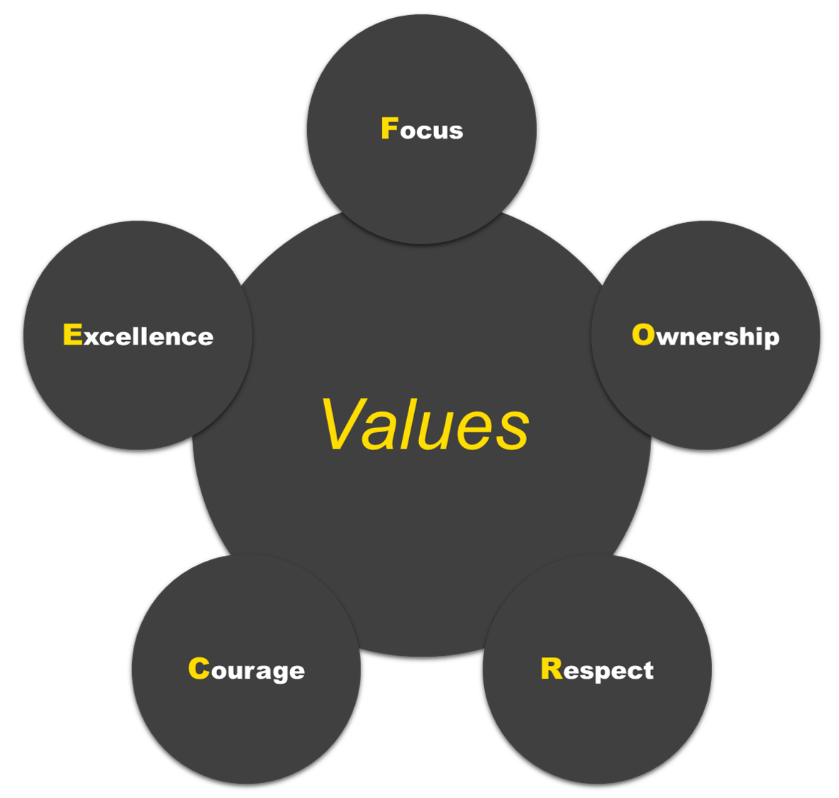 Our Company - Values